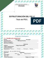 P.E.I.C. 2014-2015.pptx