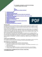 conceptos-organizacion