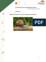 Ejemplo de texto informativo o expositivo