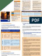Triptico 04 Facturacion_web