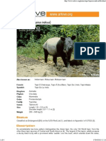 Asian tapir factsheet on ARKive - Tapirus indicus.pdf