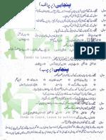 PU BA Punjabi Guess Paper 2015