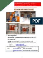 Curriculum Coyqu Sac-Abril 2013
