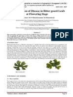 Early Detection of Disease in Bitter gourd Leafs at Flowering Stage
