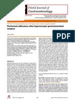 Adherencias postquirurgicas