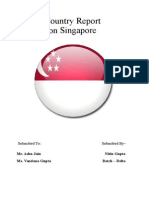 Nitin Singapore Country Report Final