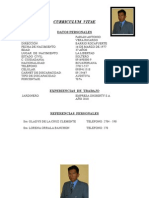 Modelo Curriculum Vitae