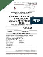 REGISTRO  AUXILIAR DE EVALUACION 2014_1.docx