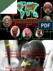 Diversidade Cultural ppt.ppsx