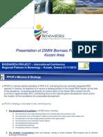 biomass solid.pdf