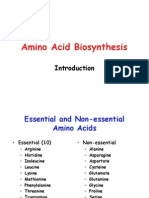 (8) AA Biosynthesis