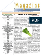 NasataMagazine_n79_FEBBRAIO12