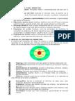 Elaboración Del Plan e Marketing