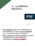 Tema_5._La_herencia_biologica.pdf