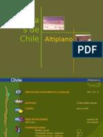 Biomas Altiplano.ppt