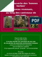 flore_des_caniveaux.pps