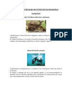 Animales en Peligro de Extinción en Honduras