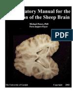 S07-08-Lab Manual Sheep Brain(1) (1)