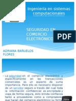 Seguridad en Comercio Electronico