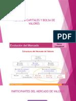 Mercado Capitales y Bolsa de Valores (1)