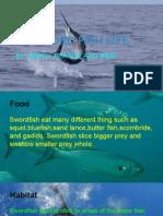 swordfish life