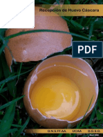 Manual Recepcion Huevos Cascara3