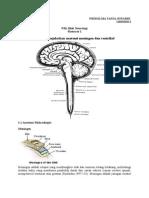 Skenario 1 Neuro PBL
