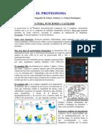 El Proteosoma Resumen