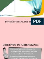 Division Sexual de Trabajo