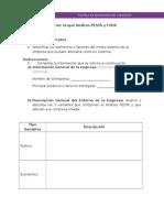 informe_grupal_analisis_pesta_foda_v4.docx