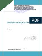 Informe Teoria de Proceso (Procedimientos)