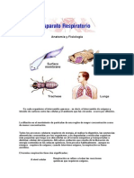 Anatomía y Fisiolrfogía