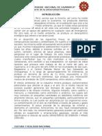 Mineria en El Peru-Informe