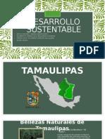 Desarrollo Sustentable en Tamaulipas