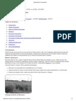 Biomass Burn Characteristics