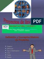 Proyectos de Inversion- Ucv