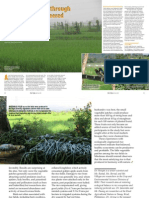 Rice Today vol. 14, no. 2 Striking a balance through ecologically engineered rice ecosystems