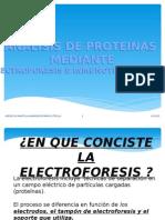 Analisis de Proteinas Mediante Electroforesis e Inmunotransferencia