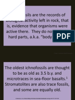 4) Trace Fossils (Icnho-fossils)