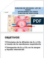 Intercambio de Gases y Perfusión