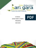 Programa Definitivo Sozialización