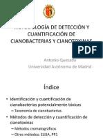 cuantificación de cianobacterias