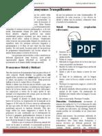 Manual de Pranayama Taller 2 Pachuca