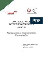 Control Si Audit Economico