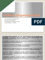 Clase 8. Cultura Organizacional