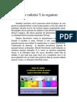 Www.referate.ro-efedctele Radiatiei X in Organism 3b815