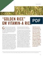 Golden Rice Factsheet Cban Web