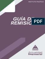 lv2013_guias_remision.pdf