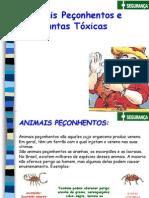animais-peconhentos.pdf