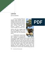 lontar.pdf